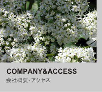 company&access
